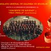 Affiche Concert 7 Décembre 2014
